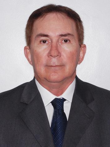 Des. Luiz Silvio Ramalho Junior